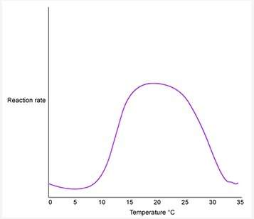 The graph above shows the progress of an enzyme-catalyzed chemical reaction. based on the graph, thi